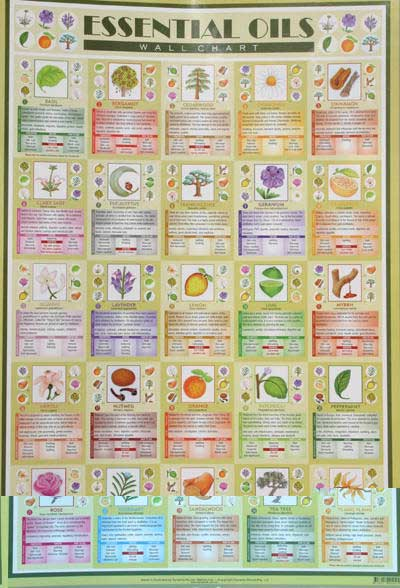 essential oils wall chart