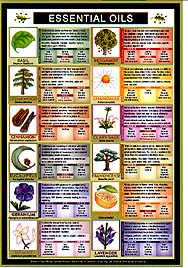 essential oils blending chart pdf